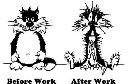 belajar produktivitas dan manajemen waktu
