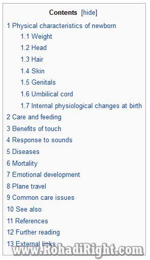 ide keyword research menggunakan wikipedia