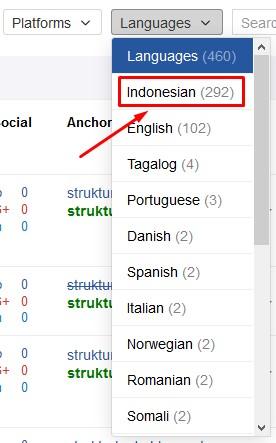 sortir backlink berdasarkan languages