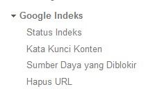 menu-google-indeks