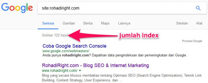 cara cek index domain expired
