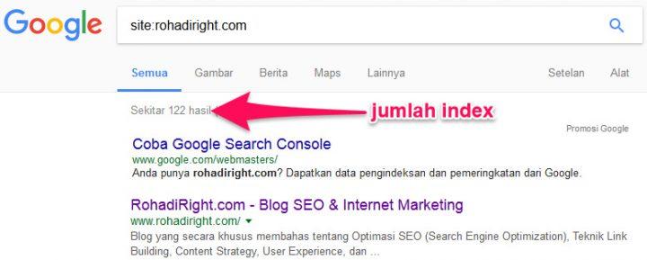 cara cek index domain expired